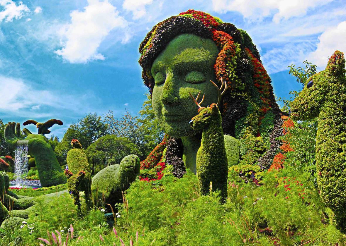 مقاله: باغ گیاه شناسی مونترال (کانادا)