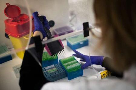 شناسایی دو گونه جدید کروناویروس در انگلستان
