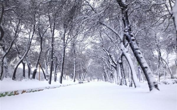 بارش شدید برف و باران در بعضی مناطق