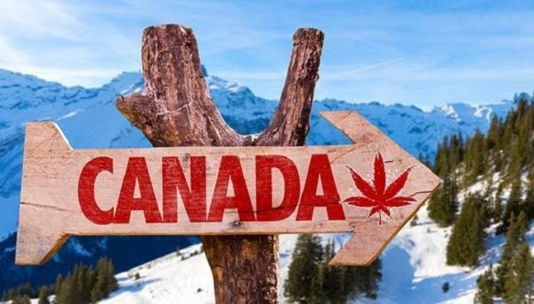 مقاله: توصیه های سفر: پیشنهاد گردش در کانادا با هزینه کم