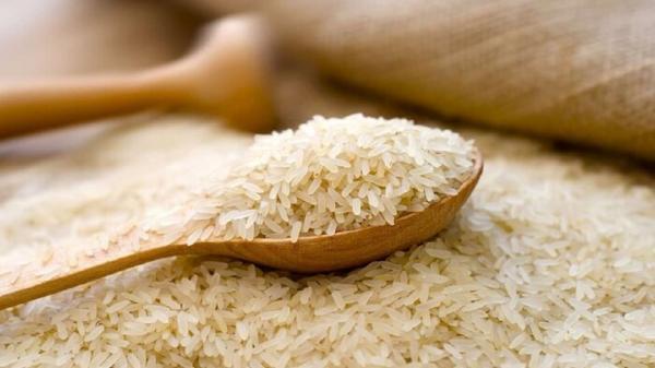 قیمت انواع برنج ایرانی در میادین میوه و تره بار